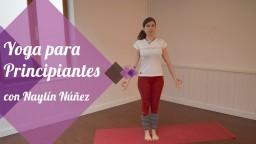 Yoga para principiantes (apto para personas que no hayan practicado antes)