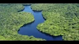 Seeking the Amazon's lost civilizations