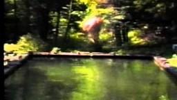 Scientific Dreamz of U - Xochiquetzal's Awakening (Forest Spirit Communication)