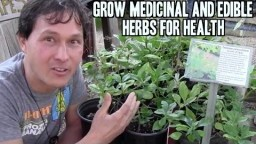 Grow Medicinal and Edible Herbs in Your Garden